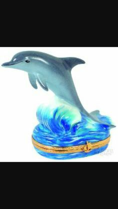 Fragiles of Dolphins