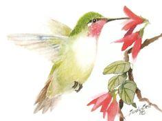 Humingbird Watercolor Painting Print by judithbelloriginals, $18.00
