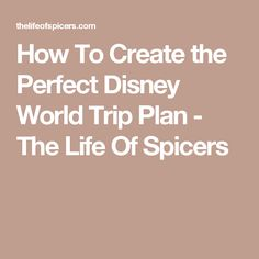 How To Create the Perfect Disney World Trip Plan - The Life Of Spicers