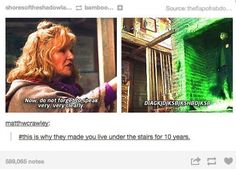 """This person who thinks Harry should get back under that staircase. 