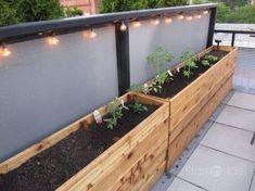 Urban Garden Design easy diy planter box - How To Make Wooden Planter Boxes Waterproof? Vegetable Planter Boxes, Planter Box Plans, Wood Planter Box, Vegetable Gardening, Organic Gardening, Urban Gardening, Planter Ideas, Raised Planter Boxes, Balcony Planter Box