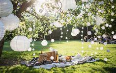 Lichterketten in einem Baum sorgen für mehr Privatsphäre im Freien.
