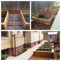 Irrigated raised planters with PVC brackets to hold various trellises, bird nets, etc.