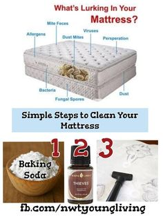 Young Living Thieves Essential Oil: Clean Your Mattress from dust mites Thieves Essential Oil, Essential Oils Cleaning, Essential Oil Uses, Natural Essential Oils, Young Living Thieves, Young Living Oils, Young Living Essential Oils, Mattress Cleaning, Clean Mattress