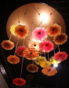 Lotus Surface Light