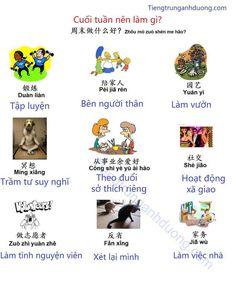 China Language, Chinese, Chinese Language