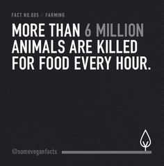 More than 6 million animals are killed for food every hour.