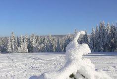 Ein zauberhaftes Wintergebilde