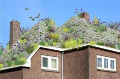 """""""Roel de Boer is a Dutch product designer with a fondness for playing with ideas about sustainability, his latest - roofing tiles that will turn the steep sloped roofs of old buildings into fancy new green roofs...""""  http://grist.org/list/these-flowerpot-roof-tiles-let-you-make-any-roof-into-a-green-roof/"""