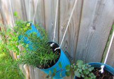 DIY hanging garden pots - herbs or flowers. Brilliant! via @stuffstephdoes
