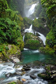 Milford Track - Mackay Falls - New Zealand