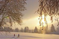 Wintermärchen – Postkarte aus dem Schweizer Jura