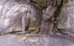 Samuel Palmer drawing (about 1828) #tree #art