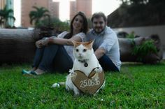 A beautiful save the date photo with the cat pet