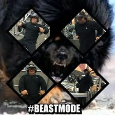 We have one round in this life so being in #BeastMode in Training, Business, Relationships and in Life in general is not even a question it should be the norm  By Beast Mode i mean do everything you do with passion, drive and focus  Live, Love and Laugh lots in life my friends  And yes Chest day today, BOOM, no excuses EVER  #life #passion #fitfam #business #drive #Motivation #fitness #TrainDifferent #health #wellness #NeverGiveUp #NodaysOff #neverstop #fightforyourdreams