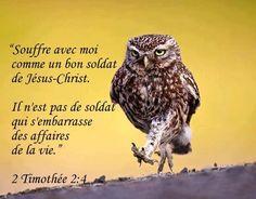 2 Timothée 2: 4