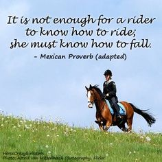It is not enough for a rider to know how to ride; she must know how to fall. -Mexican proverb (adapted)