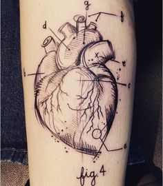 What does anatomical heart tattoo mean? We have anatomical heart tattoo ideas, designs, symbolism and we explain the meaning behind the tattoo. Herz Tattoo, Tattoo On, Piercing Tattoo, Body Art Tattoos, New Tattoos, Cool Tattoos, Piercings, Tatoos, Heart Tattoos Meaning