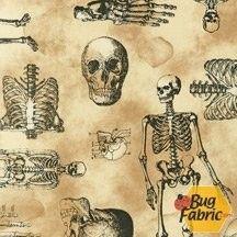 Sleepy Hollow: Skeletons Spooky - Robert Kaufman 13729-282