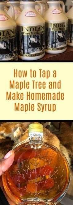 DIY Maple Syrup #DIY #Maplesugaring #IndianaDunes #PureMapleSyrup #flosfavorites