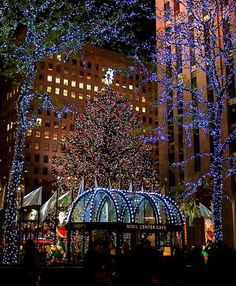 A placed I'd love to see at Christmas. Rockefeller Center, New York City New York Noel, New York Weihnachten, Christmas Lights, Christmas Tree, Christmas Photos, Xmas, White Christmas, Christmas Holidays, Ville New York