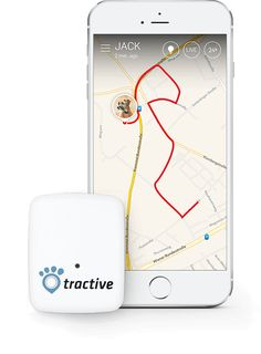 Tractive - No. 1 GPS Tracker for Cats and Dogs - Worldwide Dog Gadgets, Activity Monitor, Gps Tracking, Apple Tv, Dog Cat, Pets, Animals, Animales, Animaux