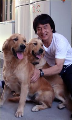 Jackie Chan and his goldens!!