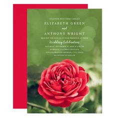 Shop Elegant Floral Rustic Red Rose Modern Wedding Invitation created by superdazzle. Personalize it with photos & text or purchase as is! 50th Birthday Invitations, Birthday Invitation Templates, 50th Birthday Party, Modern Wedding Invitations, Elegant Wedding Invitations, Red Rose Flower, Red Roses, Wedding Dj, Wedding Cards