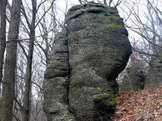 Belinské skaly 1 pri Fiľakove Garden Sculpture, Outdoor Decor, Plants, Rocks, Plant, Planets