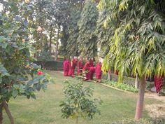 The Very Venerable 9th Khenchen Thrangu Rinpoche's monastery near Varanasi.