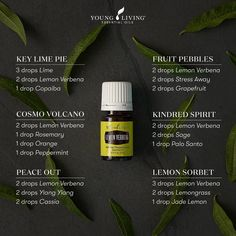 Cassia Essential Oil, Essential Oils Guide, Essential Oil Scents, Essential Oil Perfume, Essential Oil Diffuser Blends, Essential Oil Uses, Young Living Essential Oils, Palo Santo Essential Oil, Verbena