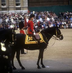 Trooping the Colour. Her Majesty Queen Elizabeth, a distinguished horsewoman, rode sidesaddle on 37 occasions, until 1987 when began attended by carriage.