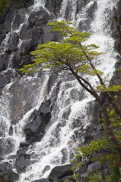 ✯ Tumbling Falls in Chile