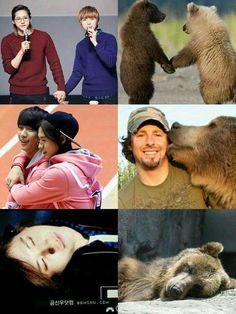 Bear CNU