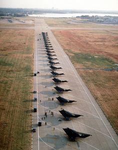 F 117 Nigh Hawk nest.