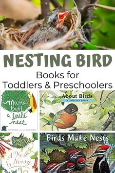 Perfect for spring this hand picked selection of toddler and preschool picture books are all about nesting birds. Add them to a nature table, book basket and read about the different nests, birds and behaviour that happens every year. Great for nature study and exploring with nature curriculumn Best Children Books, Toddler Books, Preschool Lesson Plans, Toddler Preschool, Preschool Learning Activities, Teaching Kids, Physics Lessons, Homeschool Science Curriculum, Preschool Pictures