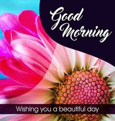 Good Morning image with lovely flowers Beautiful Good Morning Wishes, Cute Good Morning Images, Good Morning Images Flowers, Morning Pictures, Good Morning Friday, Latest Good Morning, Good Morning Gif, Good Morning Quotes, Inspirational Good Morning Messages