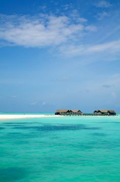 Amazing Places           - Cocoa Island - Maldives (by Chi King)