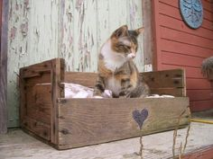 DIY Pallet Cat Beds