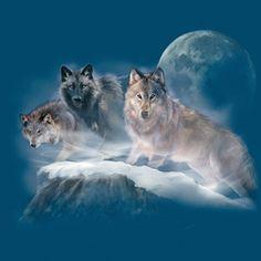 Wildlife Collage on Forest Green. Wolf Photos, Wolf Pictures, Beautiful Creatures, Animals Beautiful, Cute Animals, Tier Wolf, Fantasy Wolf, Wolf Stuff, Wolf Spirit Animal