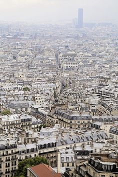Encore! Life, | ♕ |  Paris view from Montmartre  | by ©...