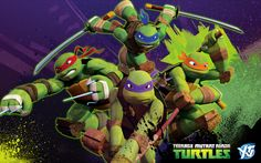 Cute Ninja Turtles Wallpaper Best Wallpaper