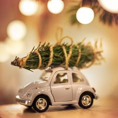 Toy volkswagen beetle and christmas tree