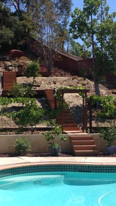 Backyard stairs and deck on hill.