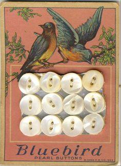 Bluebird Pearl Buttons