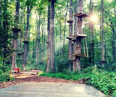 There's An Epic Adventure Park Hiding In Maryland And You Need To Visit