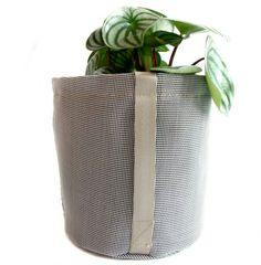 Planter Pots, Collection, Contemporary