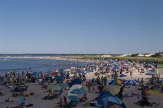 3. Crane Beach, Ipswich