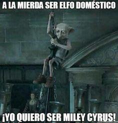 xD ala mierda ser elfo domestico ¡yo quiero ser miley cyrus!