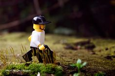 Morning rush to find a good nature photography post. 56/500 #Lego #legophotography #shutterbug #toys #blocks #bricknetwork #diy #minifigures #afol #nature